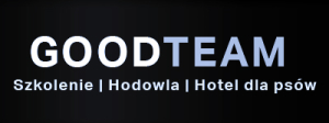logo goodteam